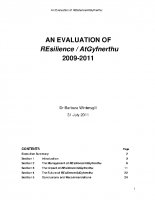 REsilience evaluation report